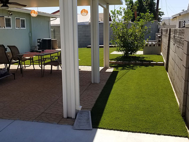 pet area grass turf