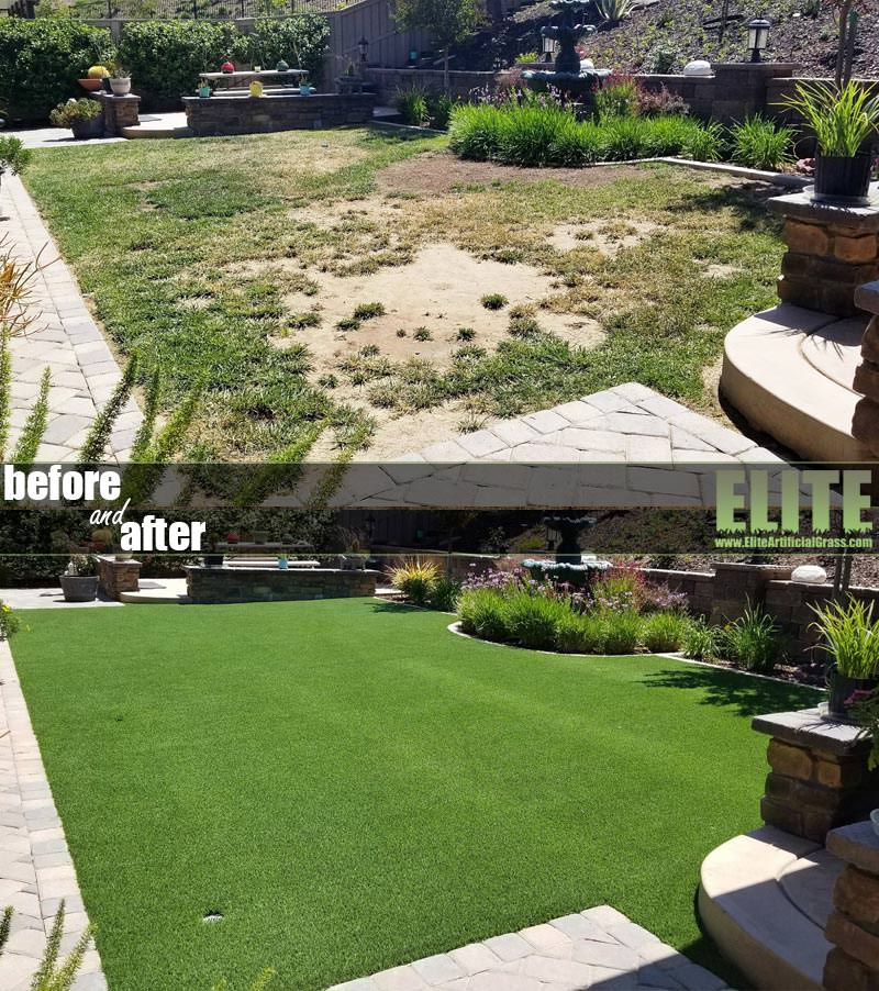 Before After Pet Turf