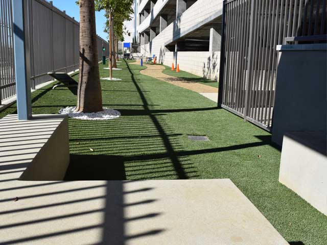 Dog Park artificial grass